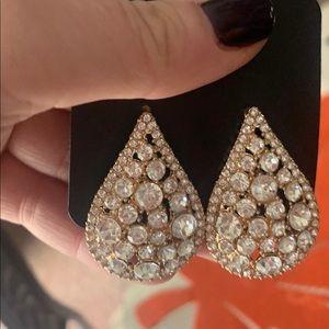 Stunning teardrop earrings